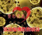 武汉疫情防控项目